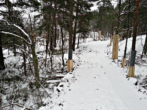 Bergväg